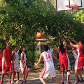 Basketball-extra